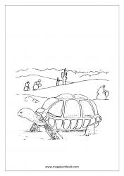 Coloring Sheet - Tortoise
