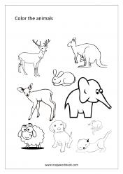 Coloring Sheet - Animals