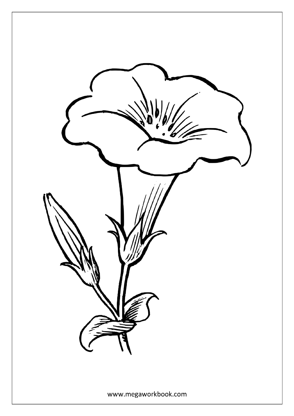 Flower Coloring Pages - Plant & Tree Coloring Pages - Leaf ...