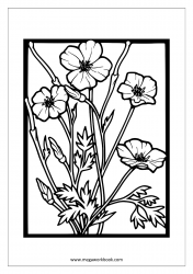 Coloring Sheet - Flowers