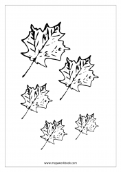Coloring Sheet - Leaves