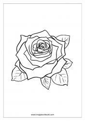 Coloring Sheet - Rose
