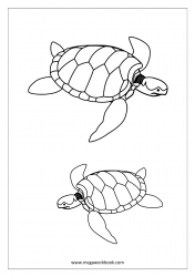 Sea Turtle Coloring Page - Turtle Coloring Pages