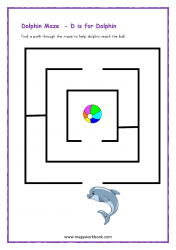 Dolphin Maze