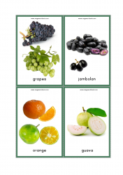 Fruits Flash Cards - Grapes, Jambolan (Jamun/Java Plum), Oranges, Guava