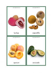 Fruits Flash Cards - Lychee, Sapodilla, Apricot, Avocado