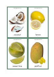 Fruits Flash Cards - Coconut, Lemon, Sweet Lime, Jackfruit