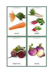Vegetables Flash Cards - Carrot, Radish, Beetroot, Turnip