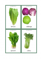 Vegetables Flash Cards - Lettuce, Cabbage, Spinach, Celery