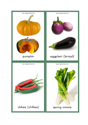 Vegetables Flash Cards - Pumpkin, Brinjal, Eggplant, Chilies, Chiles, Spring Onions