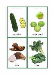 Vegetables Flash Cards - Cucumber, Apple Gourd, Taro, Kale