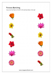 Picture Matching Worksheet - Flowers Themed
