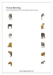 Picture Matching Worksheet - Match Picture To Other Half (Animal Themed)