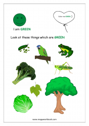 Color Recognition Worksheets for Preschool - Learn Basic Colors - Green