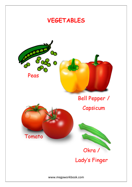 Vegetable Names (Vocabulary Book)