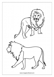 Lion Coloring Pages - Animal Coloring Pages