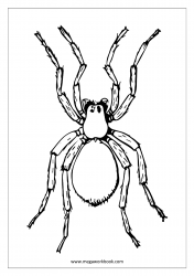 Insect Coloring Pages - Spider