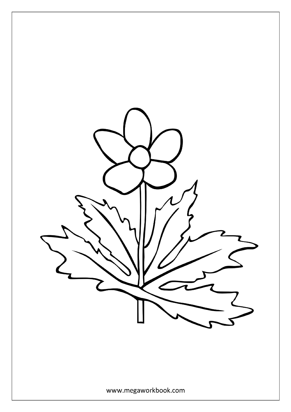 Flower Coloring Pages Plant Tree Coloring Pages Leaf Coloring Pages Free Printables Coloring Sheets Megaworkbook