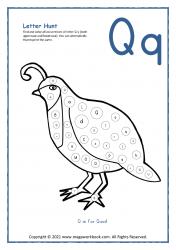 Letter Hunt (Q For Quail)