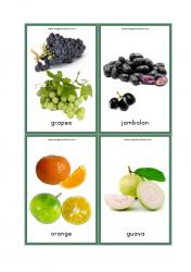 Fruits Flash Cards - Grapes, Jambolan (Jamun/Java Plum), Oranges, Guava