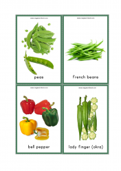 Vegetables Flash Cards - Peas, Beans, Bell Peppers, Capsicum, Okra, Lady Finger