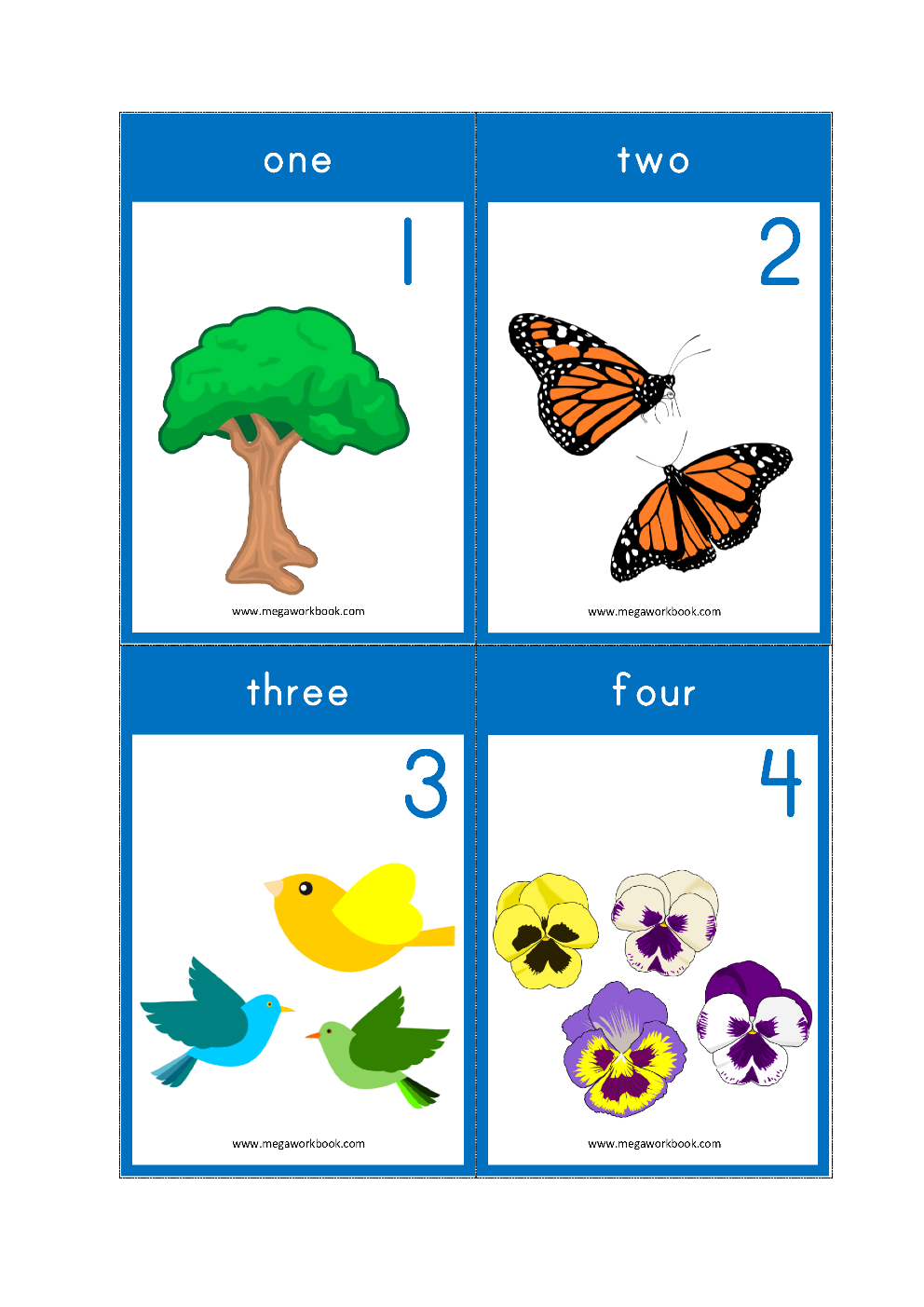 Number Counting Flash Cards